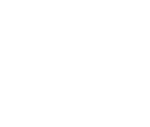 sonner_logo_stacked_white